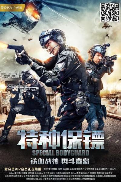 Caratula, cartel, poster o portada de Special Bodyguard