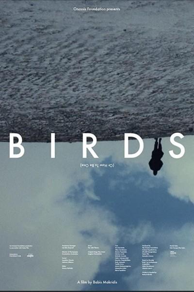 Caratula, cartel, poster o portada de Birds (or how to be one)