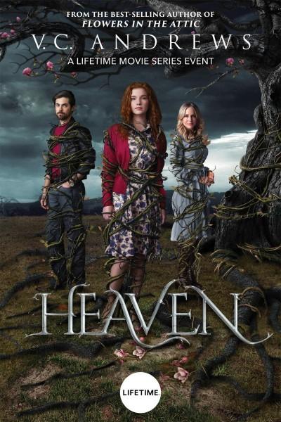 Caratula, cartel, poster o portada de Saga Steel: Los sueños de Heaven
