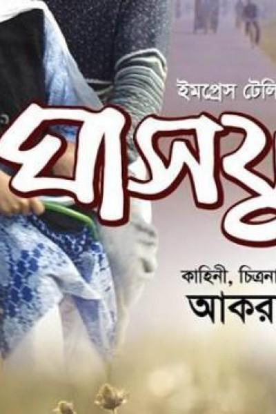 Caratula, cartel, poster o portada de The Flower of Grass