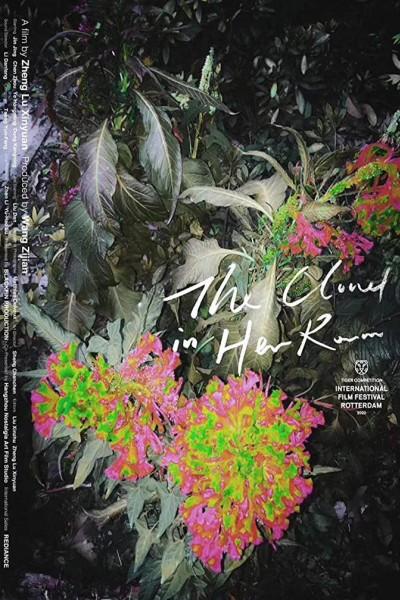 Caratula, cartel, poster o portada de The Cloud in Her Room