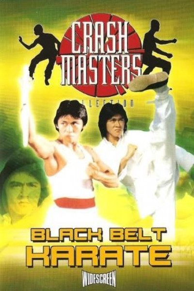 Caratula, cartel, poster o portada de Black Belt Karate