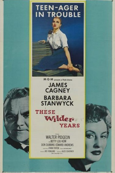 Caratula, cartel, poster o portada de These Wilder Years