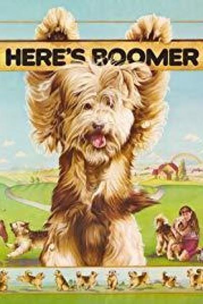 Caratula, cartel, poster o portada de Aquí está Boomer