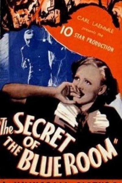 Caratula, cartel, poster o portada de Secret of the Blue Room