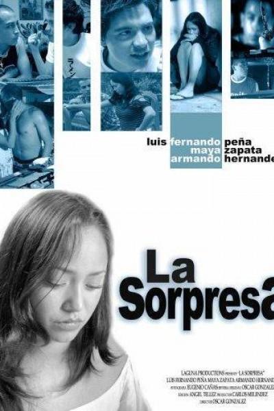 Caratula, cartel, poster o portada de La sorpresa