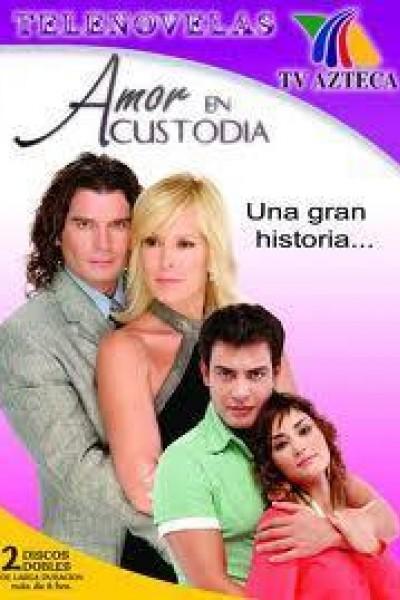 Caratula, cartel, poster o portada de Amor en custodia