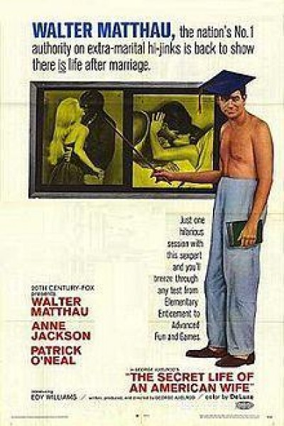 Caratula, cartel, poster o portada de La vida secreta de una esposa norteamericana