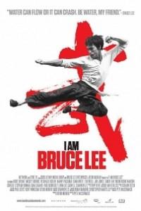 Caratula, cartel, poster o portada de Yo soy Bruce Lee