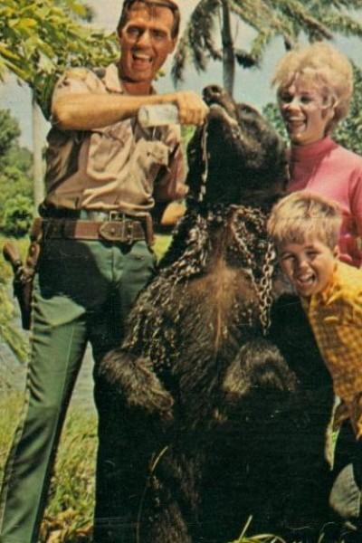 Caratula, cartel, poster o portada de Mi oso y yo