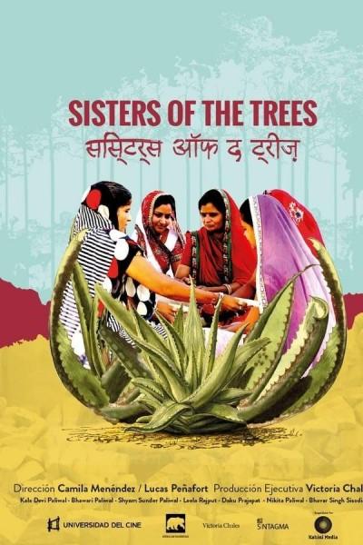 Caratula, cartel, poster o portada de Hermanas de los árboles