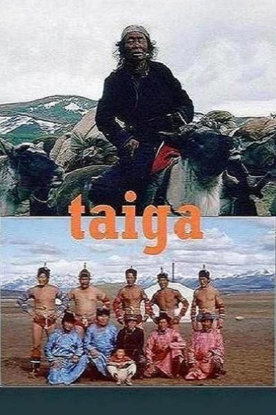 Caratula, cartel, poster o portada de Taiga