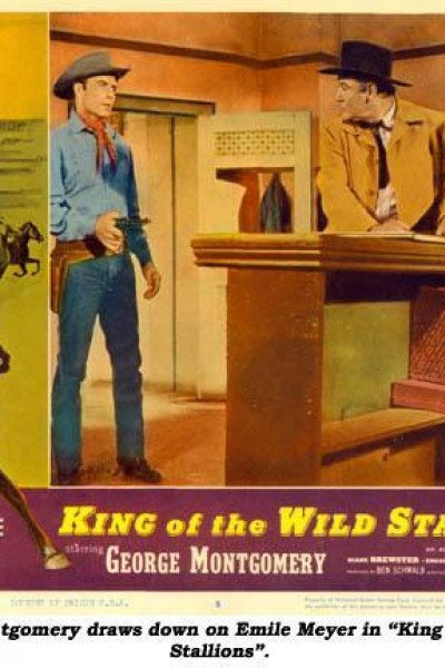 Caratula, cartel, poster o portada de King of the Wild Stallions