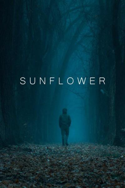 Caratula, cartel, poster o portada de Sunflower