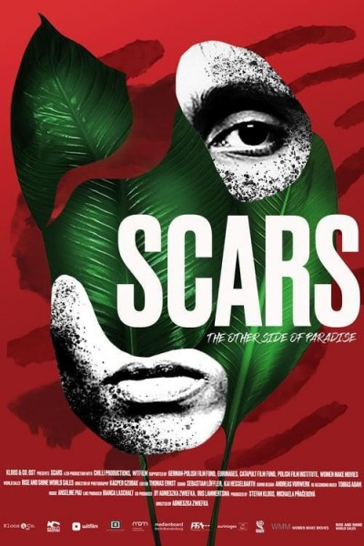 Caratula, cartel, poster o portada de Scars
