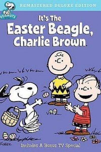 Caratula, cartel, poster o portada de Es el sabueso de pascua, Charlie Brown