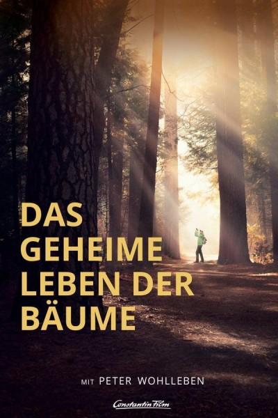 Caratula, cartel, poster o portada de The Hidden Life of Trees