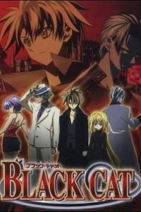 Caratula, cartel, poster o portada de Black Cat