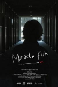 Caratula, cartel, poster o portada de Miracle Fish