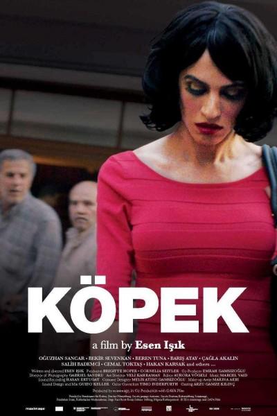 Caratula, cartel, poster o portada de Köpek