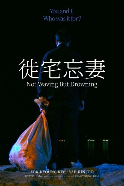 Caratula, cartel, poster o portada de Not Waving but Drowning