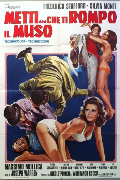 Caratula, cartel, poster o portada de Metti... che ti rompo il muso