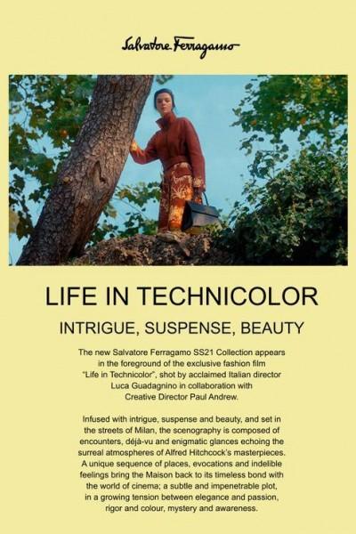 Caratula, cartel, poster o portada de Life in Technicolor