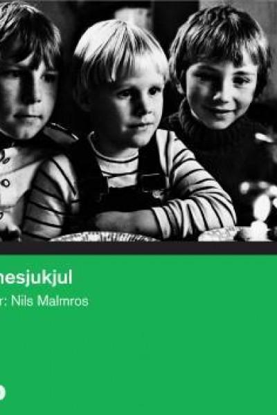 Caratula, cartel, poster o portada de Kammesjukjul