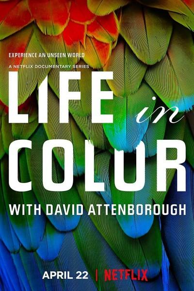Caratula, cartel, poster o portada de La vida a todo color, con David Attenborough