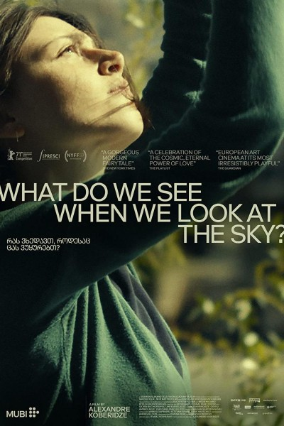 Caratula, cartel, poster o portada de What Do We See When We Look at the Sky?