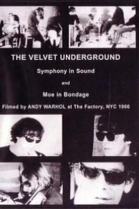 Caratula, cartel, poster o portada de The Velvet Underground and Nico: A Symphony of Sound