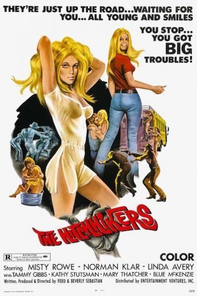 Caratula, cartel, poster o portada de The Hitchhikers
