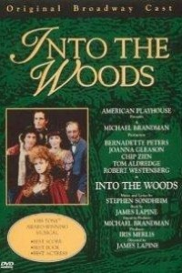 Caratula, cartel, poster o portada de Into the Woods