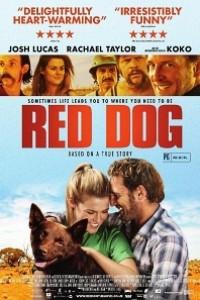 Caratula, cartel, poster o portada de Red Dog, una historia de lealtad