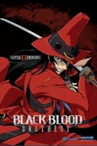 Caratula, cartel, poster o portada de Black Blood Brothers