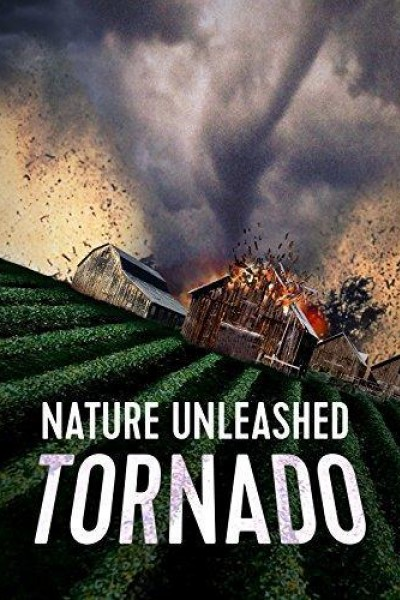Caratula, cartel, poster o portada de Tornado