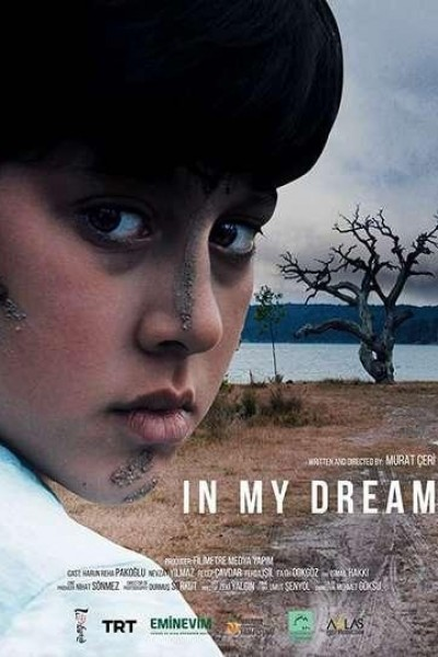 Caratula, cartel, poster o portada de In My Dream