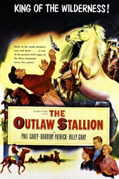 Caratula, cartel, poster o portada de The Outlaw Stallion