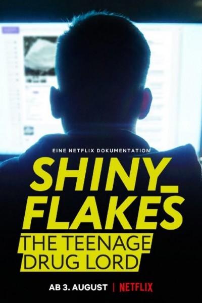 Caratula, cartel, poster o portada de Shiny_Flakes: El cibernarco adolescente
