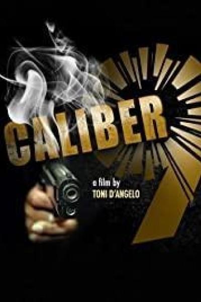 Caratula, cartel, poster o portada de Calibro 9