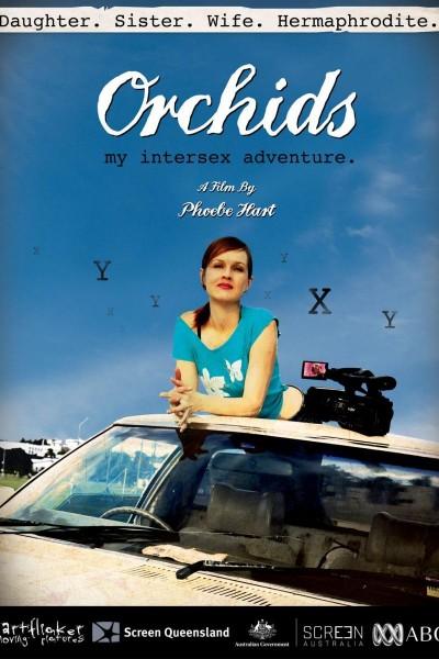 Caratula, cartel, poster o portada de Mi aventura intersexual