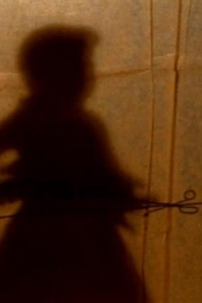 Caratula, cartel, poster o portada de The Secret Story