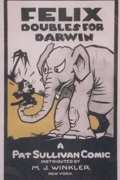 Caratula, cartel, poster o portada de Felix Doubles for Darwin