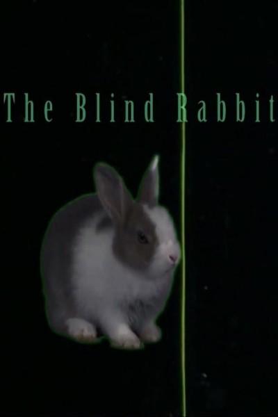 Caratula, cartel, poster o portada de The Blind Rabbit