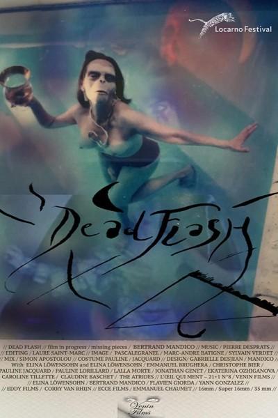 Caratula, cartel, poster o portada de Dead Flash