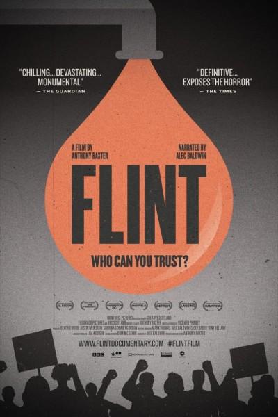 Caratula, cartel, poster o portada de Flint: Who Can You Trust?