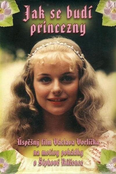 Caratula, cartel, poster o portada de Jak se budí princezny