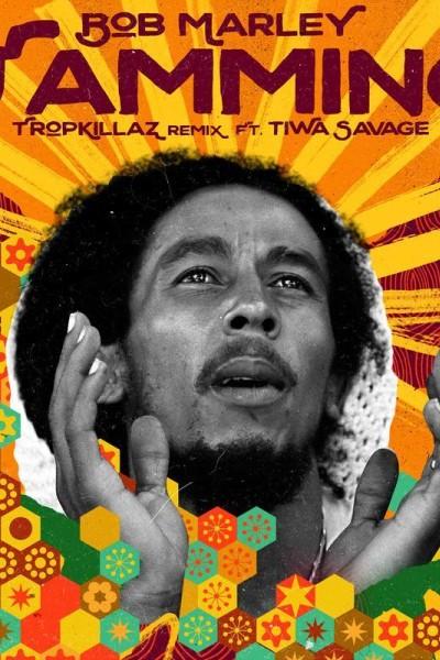 Caratula, cartel, poster o portada de Bob Marley & The Wailers: Jamming (Vídeo musical)