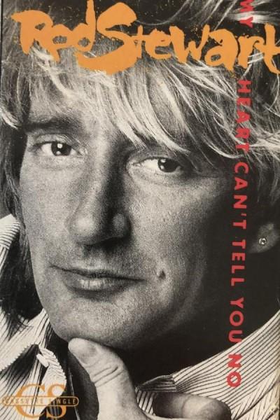 Caratula, cartel, poster o portada de Rod Stewart: My Heart Can\'t Tell You No (Vídeo musical)