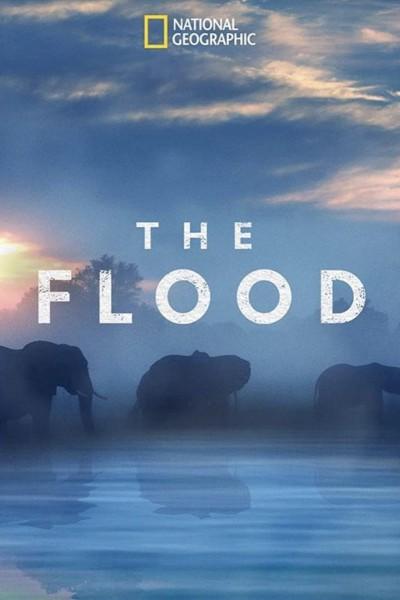 Caratula, cartel, poster o portada de La inundación del Okavango
